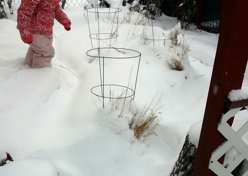In, Through, On and Under - Outdoor Babies in Snow (2/5)