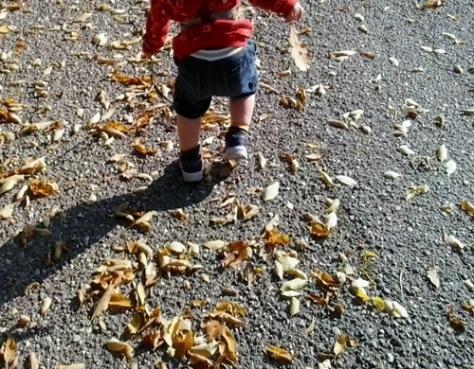 14-10-leaves03